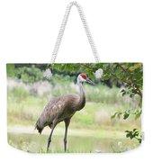 Curious Sandhill Crane Weekender Tote Bag