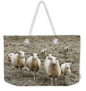 Curious Sheep Weekender Tote Bag