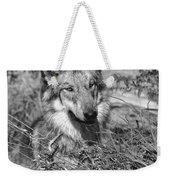Curious Wolf Pup Weekender Tote Bag
