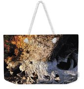 Curves And Colors In Nature Weekender Tote Bag by Todd A Blanchard