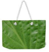 Curvy Leaf Lines Weekender Tote Bag