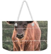 Cute Calf Weekender Tote Bag