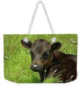 Cute Cow Weekender Tote Bag by Terri Waters
