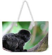 Cute Goeldi's Marmoset Sitting In A Tree Weekender Tote Bag