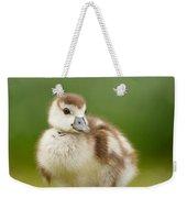 Cute Gosling Weekender Tote Bag