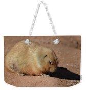 Cute Ground Squirrel Burrowing In The Dirt Weekender Tote Bag