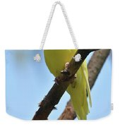 Cute Little Parakeet Resting On A Branch Weekender Tote Bag