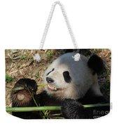 Cute Panda Bear With Very Sharp Teeth Eating Bamboo Weekender Tote Bag