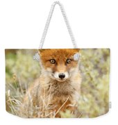 Cute Red Fox Kit Weekender Tote Bag