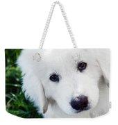 Cute White Puppy Dog Portrait. Polish Tatra Sheepdog Weekender Tote Bag