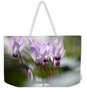 Cyclamen At Lachish 1 Weekender Tote Bag