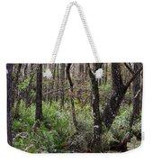 Cypress Arch Weekender Tote Bag