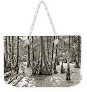 Cypress Evening Weekender Tote Bag