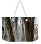 Cypress In The Bayou Weekender Tote Bag