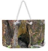 Cypress Knee Weekender Tote Bag