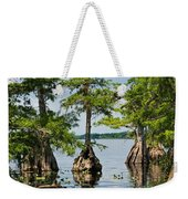 Cypress Reflections Weekender Tote Bag