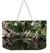 Cypress Swamp  Weekender Tote Bag
