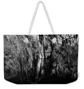 Cypress Tree Weekender Tote Bag