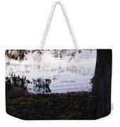Cypress Trees And Water2 Weekender Tote Bag