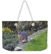 D-a0037 Gray Fox On Our Property Weekender Tote Bag