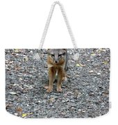 D-a0051-dc Gray Fox Pup Weekender Tote Bag