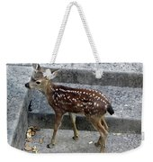 D-a0069 Mule Deer Fawn On Our Property On Sonoma Mountain Weekender Tote Bag