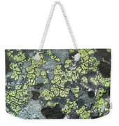 D07343-dc Lichen On Rock Weekender Tote Bag