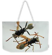 D2b6337 Wasps On Sonoma Mountain Weekender Tote Bag