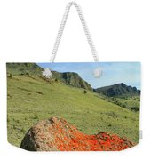 Da5872 Lichen Covered Rock Below Abert Rim Weekender Tote Bag