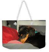 Dachshund Dog, Pug Dog, Good, Time, Bed, Sleeping, Relaxing Time Weekender Tote Bag