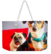 Dachshund Dog, Pug Dog, Good Time On Bed Weekender Tote Bag