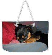 Dachshund Dog, Pug Dog, Good Time On Bed, Sleeping Weekender Tote Bag