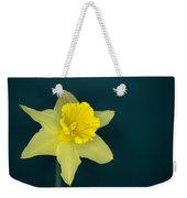 Daffo The Dilly Weekender Tote Bag