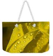 Daffodil Dew Weekender Tote Bag