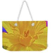 Daffodil In Spring Weekender Tote Bag