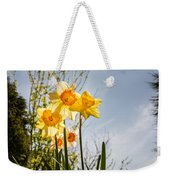 Daffodils Backlit Weekender Tote Bag