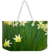 Daffodils In A Bunch Weekender Tote Bag