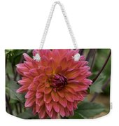 Dahlia In Bloom 19 Weekender Tote Bag