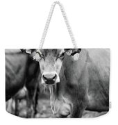 Dairy Cow On A Farm Stowe Vermont Black And White Weekender Tote Bag