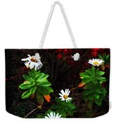 Daisies At The Boathouse Weekender Tote Bag