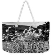 Daisies By The Roadside At Loch Linnhe B W Weekender Tote Bag