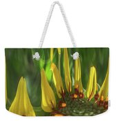 Daisy Abstract 032317-6357-4cr Weekender Tote Bag