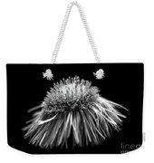 Daisy Flea Bane 0619c Weekender Tote Bag