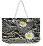 Daisy Fleabane Flowers Weekender Tote Bag