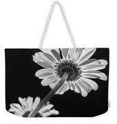Daisy Reaching For The Sun Weekender Tote Bag