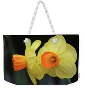 Dallas Daffodils 07 Weekender Tote Bag