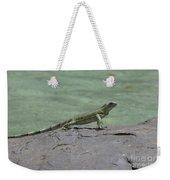 Dancing Iguana On Rocks Along The Water's Edge Weekender Tote Bag