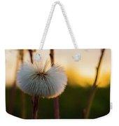 Dandelion At Sunset Weekender Tote Bag
