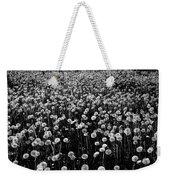 Dandelion Field In Black And White Weekender Tote Bag