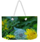 Dandelions, Young And Old Weekender Tote Bag